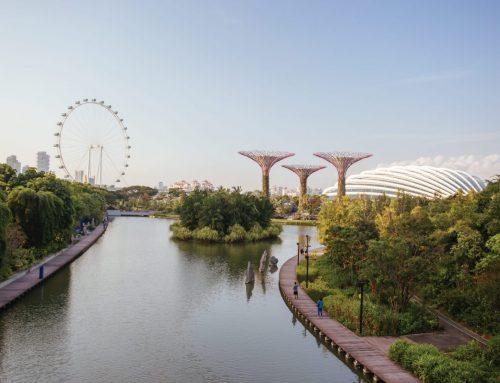 EntrePass(싱가포르 사업가 비자)에 대한 모든 것